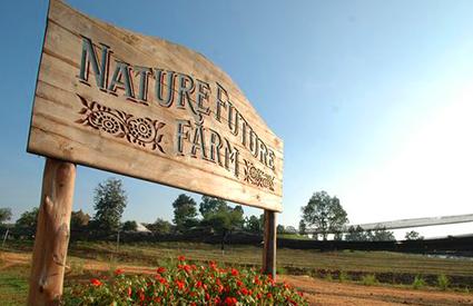 NATURE FUTURE FARM