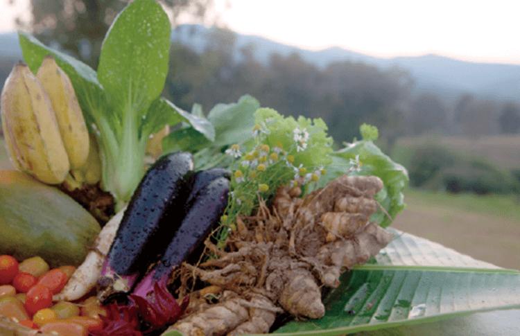 資源や食材の循環